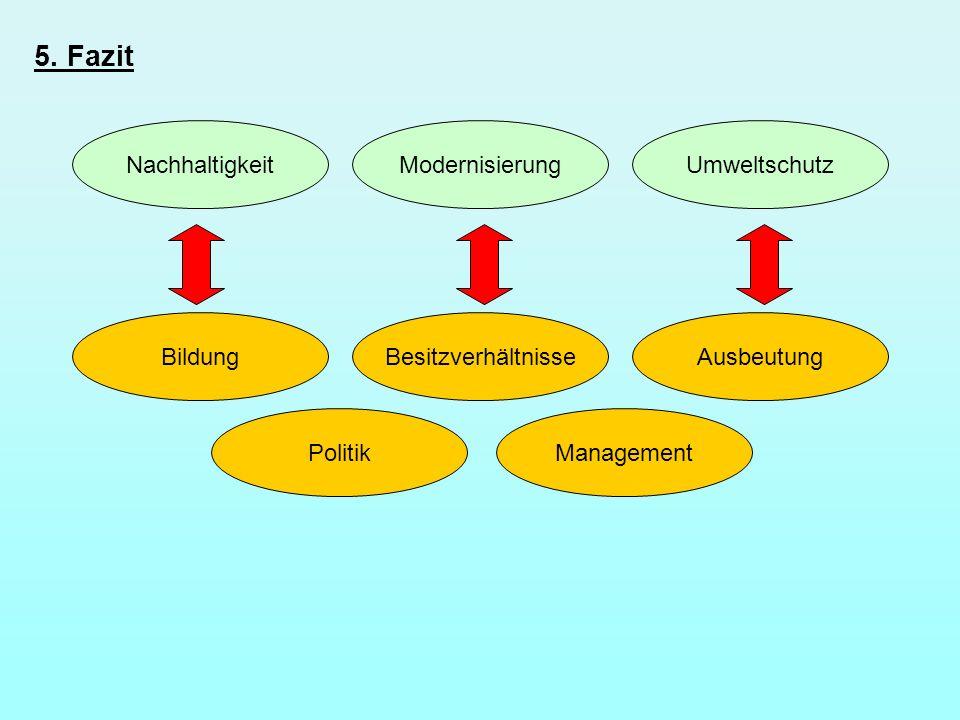 5. Fazit Nachhaltigkeit BildungAusbeutung ModernisierungUmweltschutz Besitzverhältnisse PolitikManagement