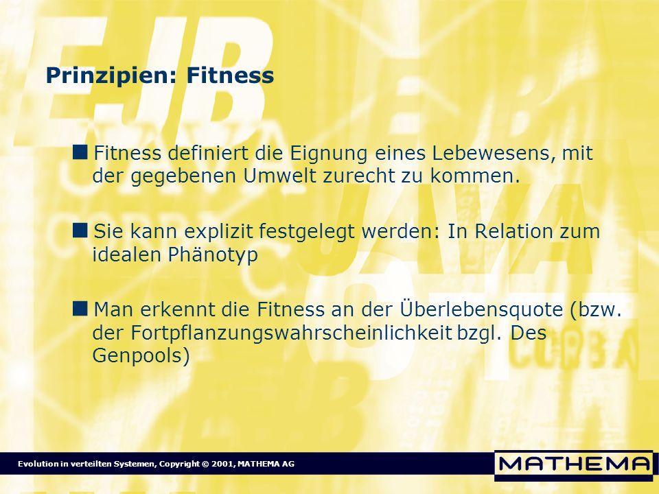 Evolution in verteilten Systemen, Copyright © 2001, MATHEMA AG Prinzipien: Fitness Fitness definiert die Eignung eines Lebewesens, mit der gegebenen U