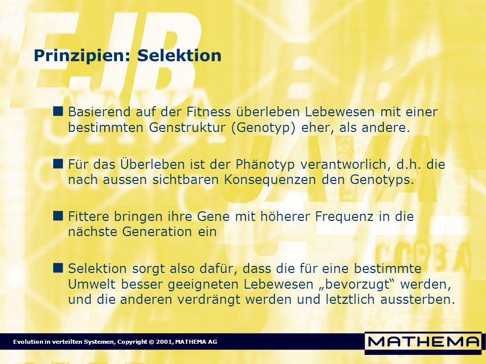 Evolution in verteilten Systemen, Copyright © 2001, MATHEMA AG Prinzipien: Selektion Basierend auf der Fitness überleben Lebewesen mit einer bestimmte