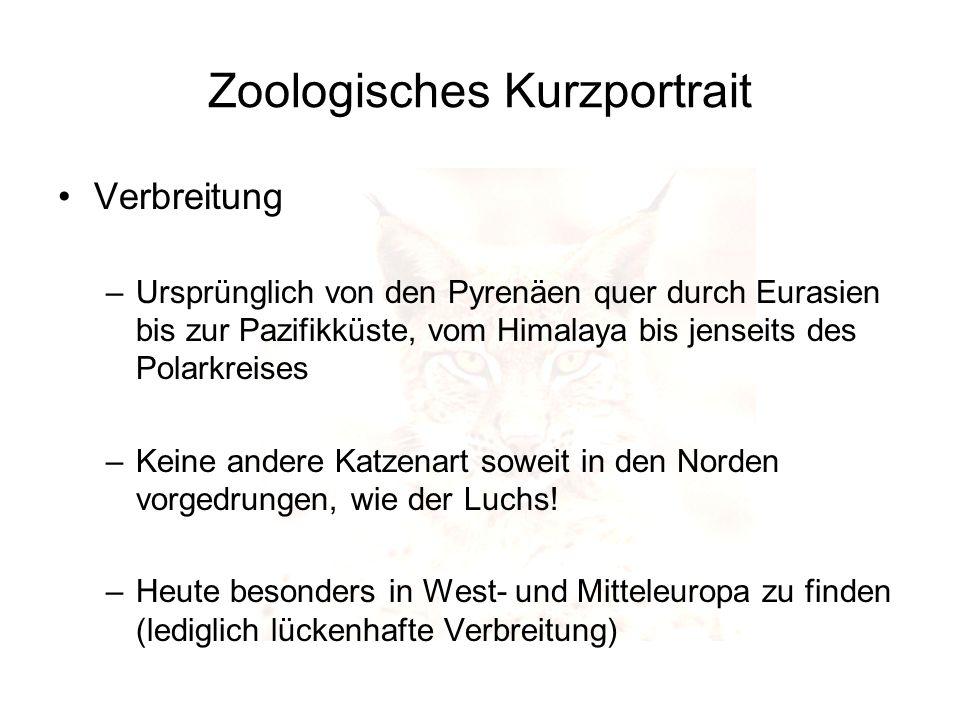 Zoologisches Kurzportrait Verbreitung –Ursprünglich von den Pyrenäen quer durch Eurasien bis zur Pazifikküste, vom Himalaya bis jenseits des Polarkrei