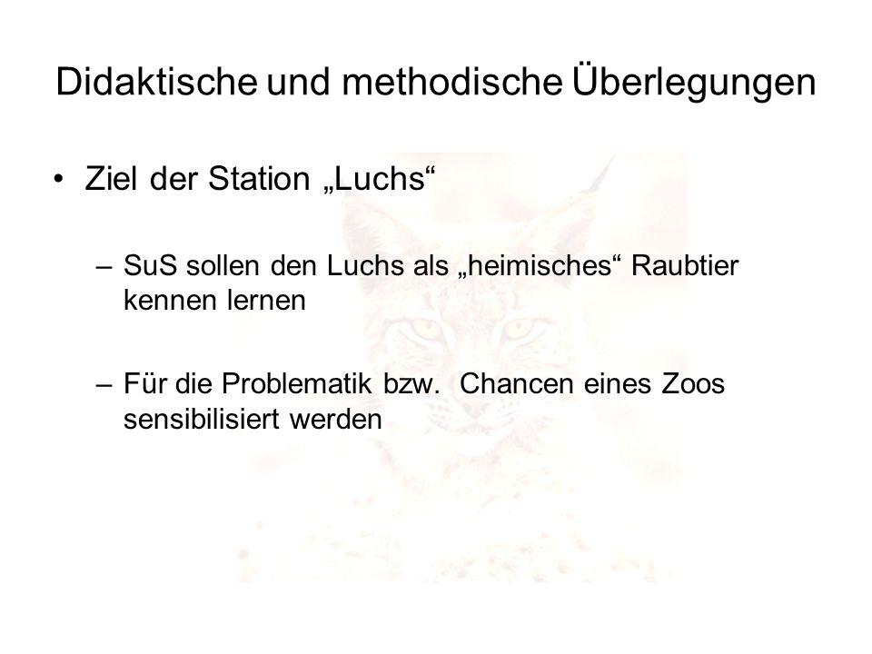 Didaktische und methodische Überlegungen Ziel der Station Luchs –SuS sollen den Luchs als heimisches Raubtier kennen lernen –Für die Problematik bzw.