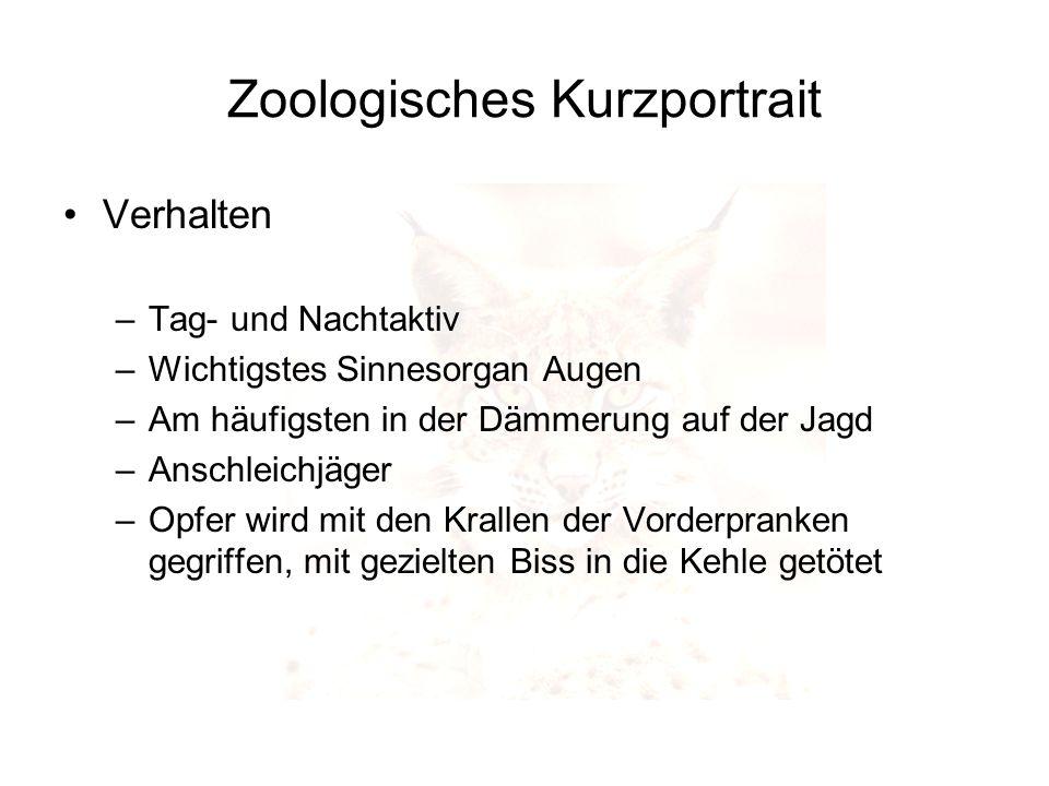 Zoologisches Kurzportrait Nahrung –Luchse sind reine Fleischfresser –Wichtigste Nahrung in den Alpen sind Rehe und Gämsen –Reißt im Jahr 50 – 60 Paarhufer (ein Tier pro Woche) –Sehr selten Nutztiere