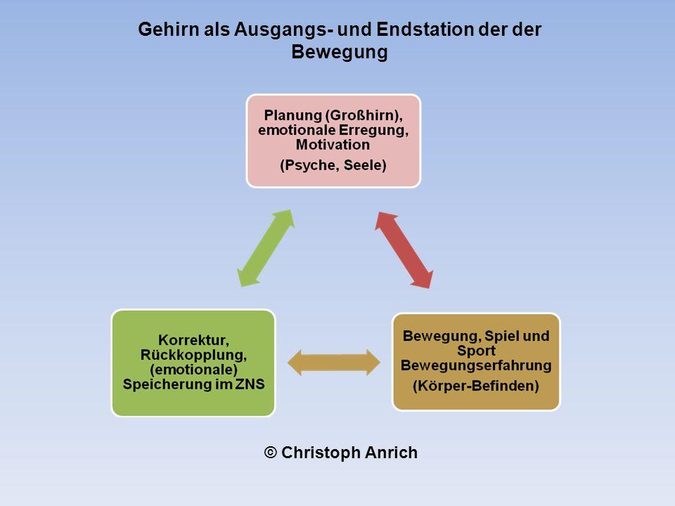 Gehirn als Ausgangs- und Endstation der der Bewegung © Christoph Anrich