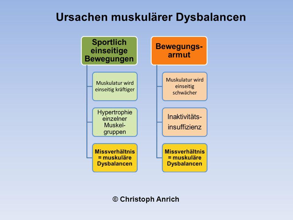 Ursachen muskulärer Dysbalancen © Christoph Anrich