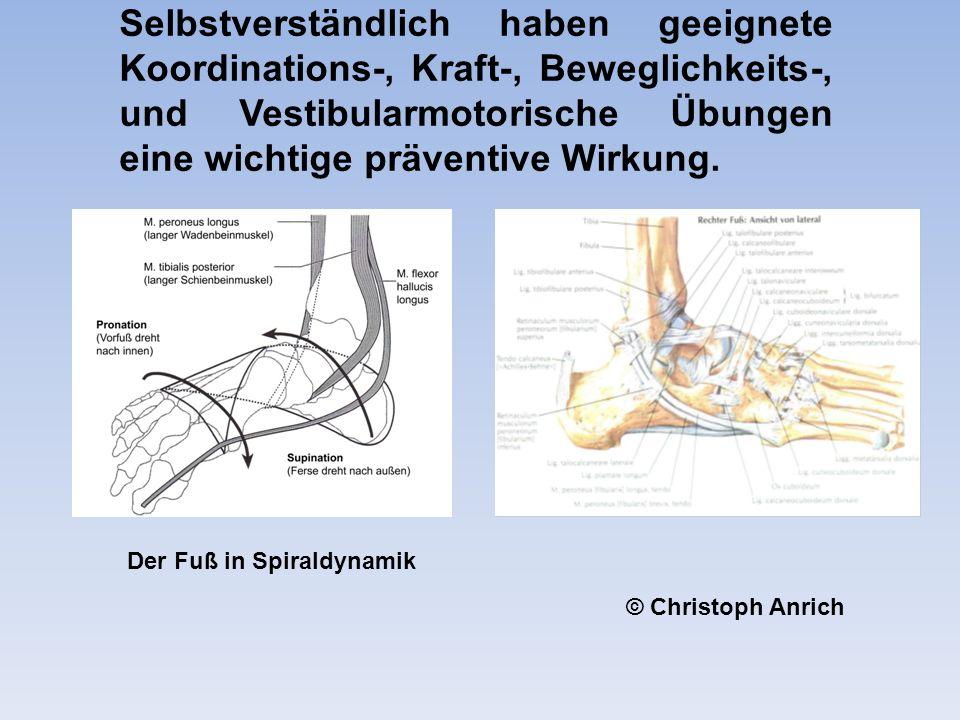 Selbstverständlich haben geeignete Koordinations-, Kraft-, Beweglichkeits-, und Vestibularmotorische Übungen eine wichtige präventive Wirkung.