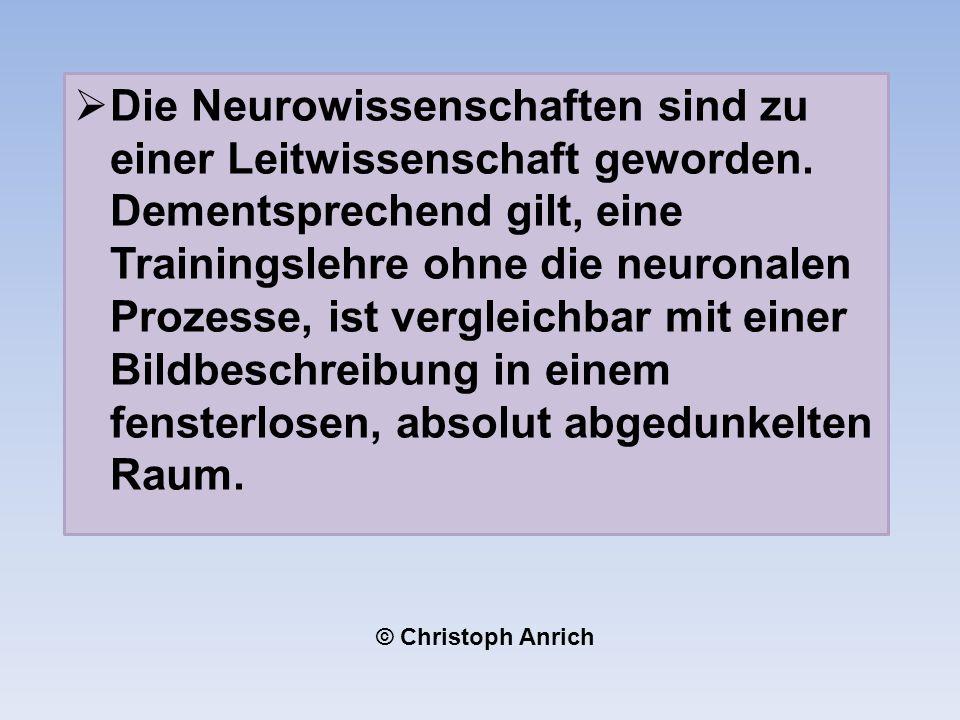 Die Neurowissenschaften sind zu einer Leitwissenschaft geworden.