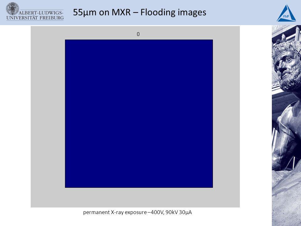 permanent X-ray exposure –400V, 90kV 30µA 55µm on MXR – Flooding images