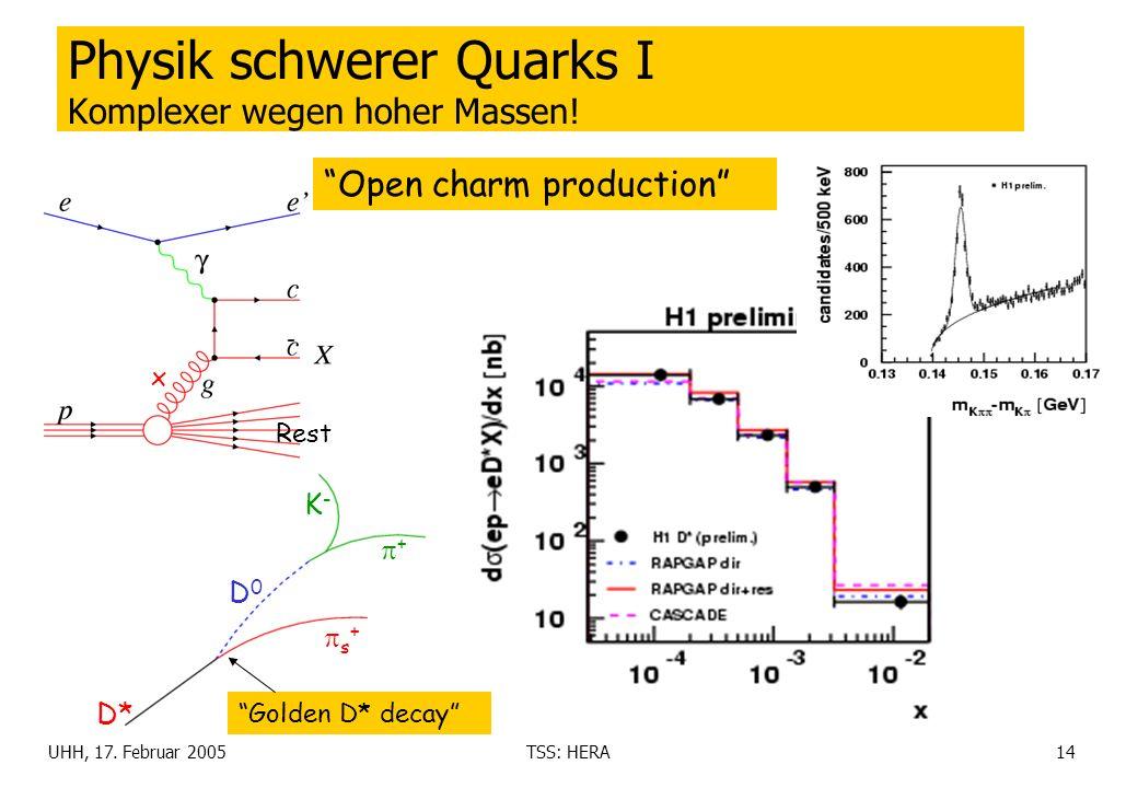 UHH, 17. Februar 2005TSS: HERA14 Physik schwerer Quarks I Komplexer wegen hoher Massen! Open charm production D* s + + K-K- D0D0 Golden D* decay Rest