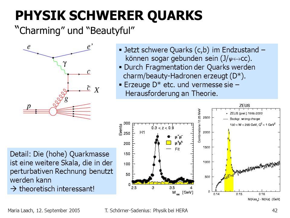 Maria Laach, 12. September 2005T. Schörner-Sadenius: Physik bei HERA42 PHYSIK SCHWERER QUARKS Charming und Beautyful Jetzt schwere Quarks (c,b) im End