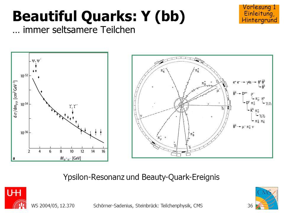 Vorlesung 1 Einleitung, Hintergrund WS 2004/05, 12.370Schörner-Sadenius, Steinbrück: Teilchenphysik, CMS36 Beautiful Quarks: Y (bb) … immer seltsamere