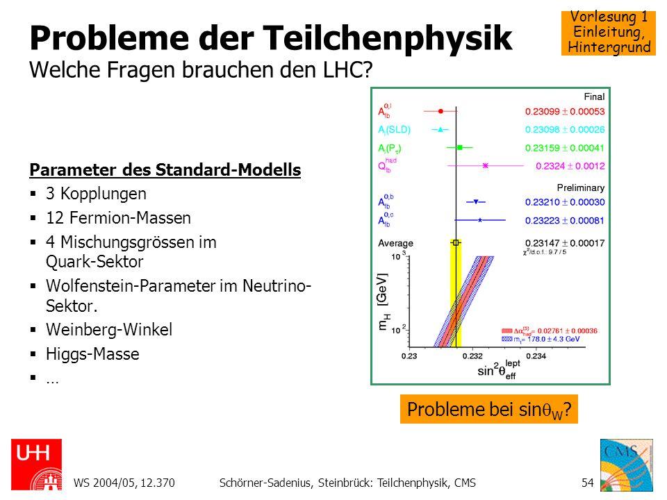 Vorlesung 1 Einleitung, Hintergrund WS 2004/05, 12.370Schörner-Sadenius, Steinbrück: Teilchenphysik, CMS54 Probleme der Teilchenphysik Welche Fragen b