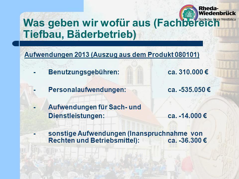 Was geben wir wofür aus (Fachbereich Tiefbau, Bäderbetrieb) Aufwendungen 2013 (Auszug aus dem Produkt 080101) -Benutzungsgebühren:ca. 310.000 -Persona
