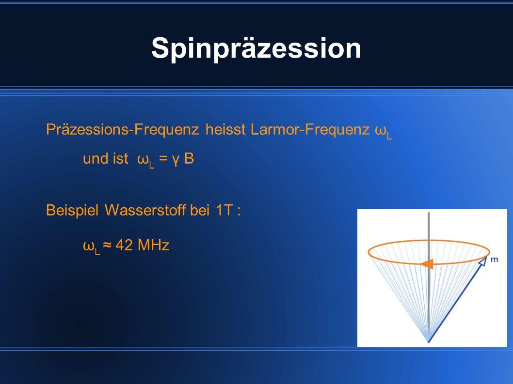 Präzessions-Frequenz heisst Larmor-Frequenz ω L und ist ω L = γ B Beispiel Wasserstoff bei 1T : ω L 42 MHz