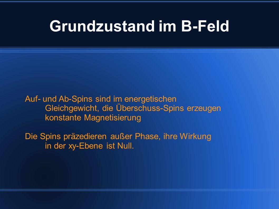 Grundzustand im B-Feld Auf- und Ab-Spins sind im energetischen Gleichgewicht, die Überschuss-Spins erzeugen konstante Magnetisierung Die Spins präzedi
