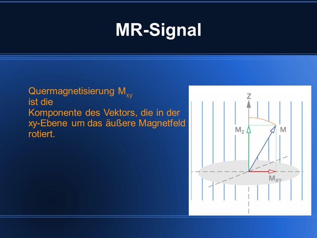 MR-Signal Quermagnetisierung M xy ist die Komponente des Vektors, die in der xy-Ebene um das äußere Magnetfeld rotiert.