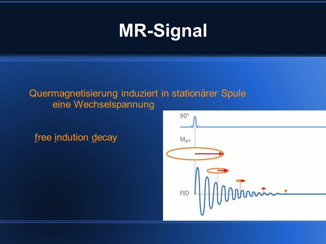 MR-Signal Quermagnetisierung induziert in stationärer Spule eine Wechselspannung free indution decay