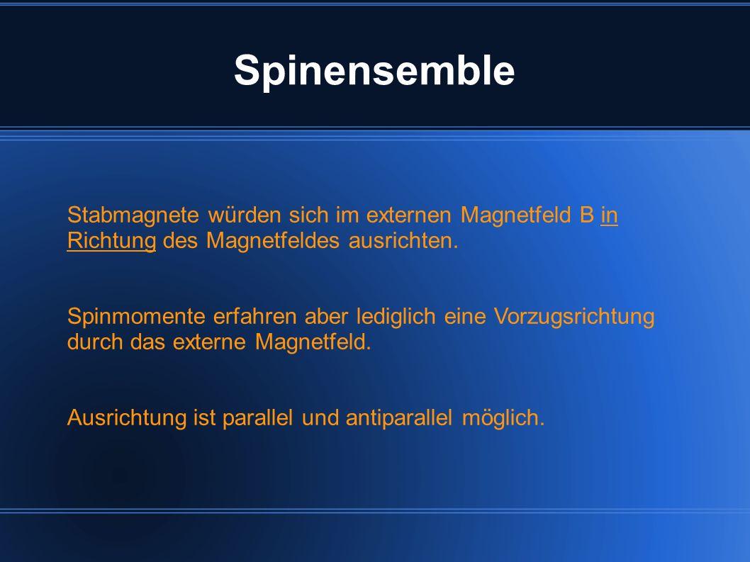 Stabmagnete würden sich im externen Magnetfeld B in Richtung des Magnetfeldes ausrichten. Spinmomente erfahren aber lediglich eine Vorzugsrichtung dur