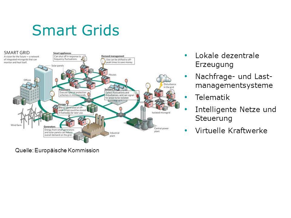Smart Grids Lokale dezentrale Erzeugung Nachfrage- und Last- managementsysteme Telematik Intelligente Netze und Steuerung Virtuelle Kraftwerke Quelle: