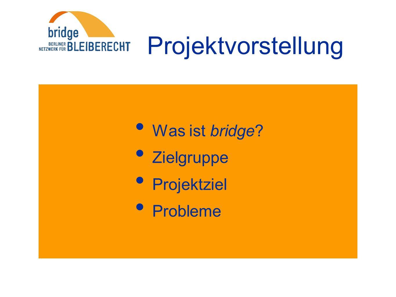 Projektvorstellung Was ist bridge Zielgruppe Projektziel Probleme