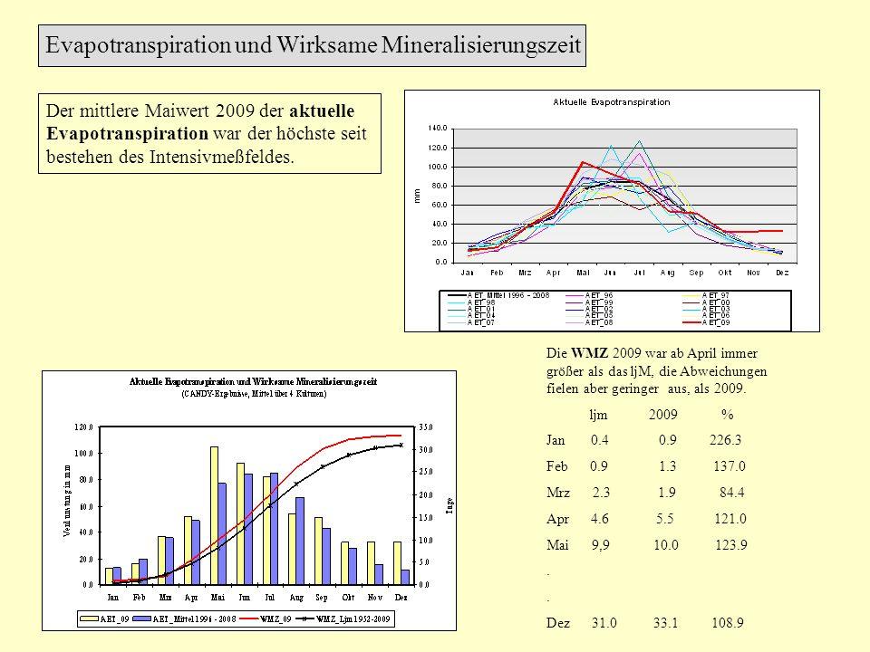 Der mittlere Maiwert 2009 der aktuelle Evapotranspiration war der höchste seit bestehen des Intensivmeßfeldes. Evapotranspiration und Wirksame Mineral