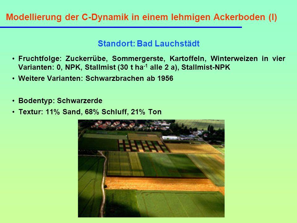 Modellierung der C-Dynamik in einem lehmigen Ackerboden (I) Standort: Bad Lauchstädt Fruchtfolge: Zuckerrübe, Sommergerste, Kartoffeln, Winterweizen i