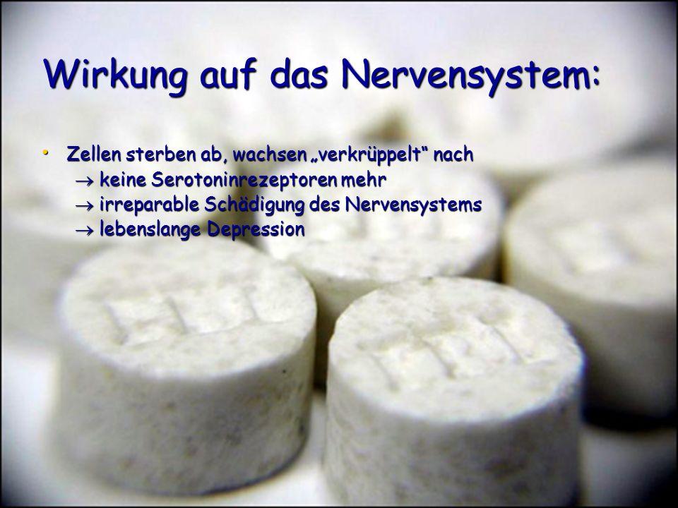 Wirkung auf das Nervensystem: Zellen sterben ab, wachsen verkrüppelt nach Zellen sterben ab, wachsen verkrüppelt nach keine Serotoninrezeptoren mehr k
