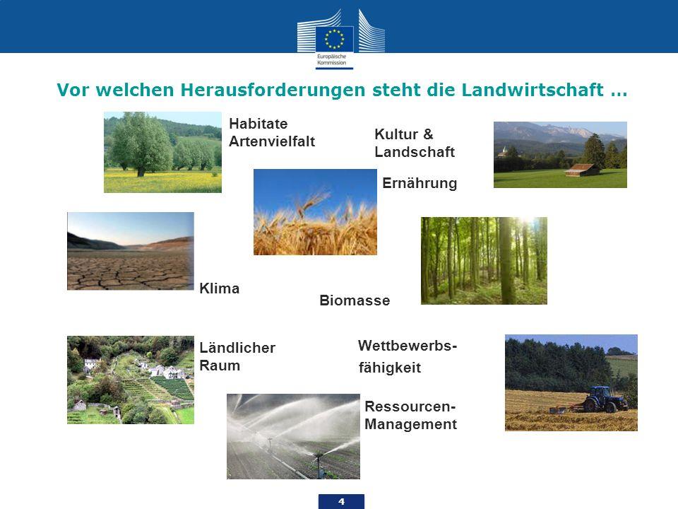 4 Ernährung Habitate Artenvielfalt Wettbewerbs- fähigkeit Kultur & Landschaft Biomasse Klima Ländlicher Raum Ressourcen- Management Vor welchen Heraus