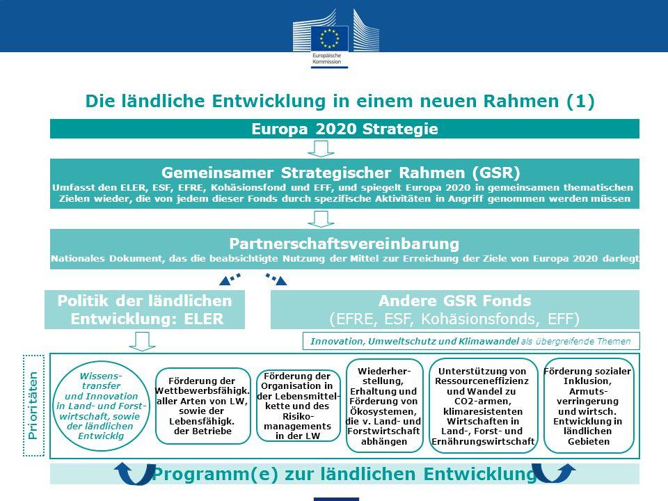 7 Programm(e) zur ländlichen Entwicklung Die ländliche Entwicklung in einem neuen Rahmen (1) Gemeinsamer Strategischer Rahmen (GSR) Umfasst den ELER,