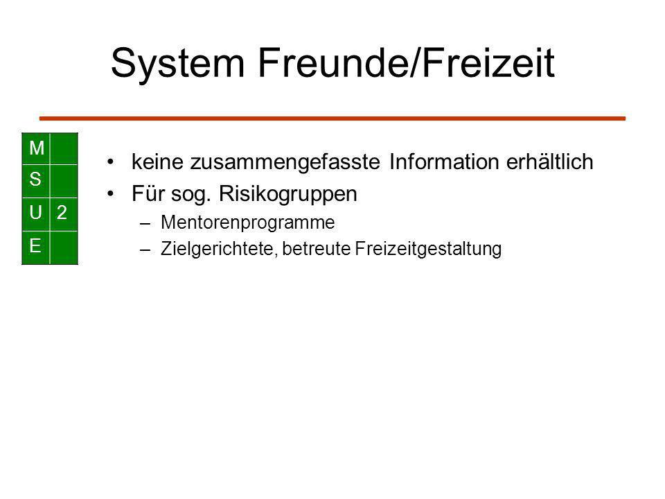 System Freunde/Freizeit keine zusammengefasste Information erhältlich Für sog. Risikogruppen –Mentorenprogramme –Zielgerichtete, betreute Freizeitgest