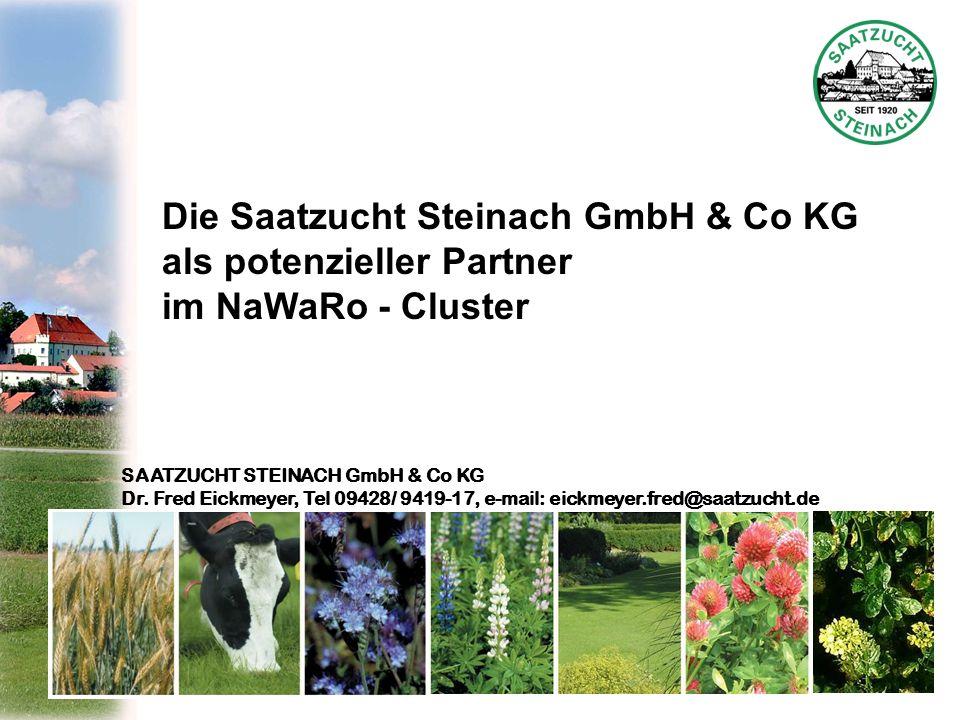 SAATZUCHT STEINACH GmbH & Co KG Dr. Fred Eickmeyer, Tel 09428/ 9419-17, e-mail: eickmeyer.fred@saatzucht.de Die Saatzucht Steinach GmbH & Co KG als po