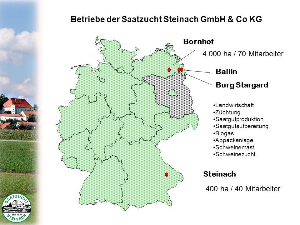 Betriebe der Saatzucht Steinach GmbH & Co KG Bornhof Steinach Ballin Burg Stargard 4.000 ha / 70 Mitarbeiter 400 ha / 40 Mitarbeiter Landwirtschaft Zü