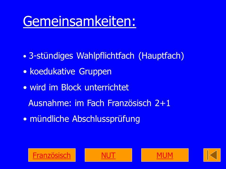 Gemeinsamkeiten: 3-stündiges Wahlpflichtfach (Hauptfach) koedukative Gruppen wird im Block unterrichtet Ausnahme: im Fach Französisch 2+1 mündliche Ab