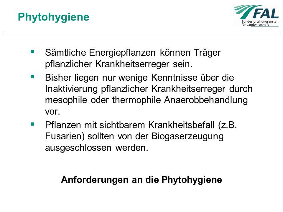 Phytohygiene Sämtliche Energiepflanzen können Träger pflanzlicher Krankheitserreger sein. Bisher liegen nur wenige Kenntnisse über die Inaktivierung p
