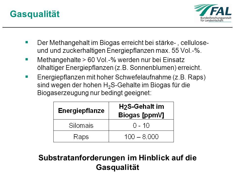 Gasqualität Der Methangehalt im Biogas erreicht bei stärke-, cellulose- und und zuckerhaltigen Energiepflanzen max. 55 Vol.-%. Methangehalte > 60 Vol.