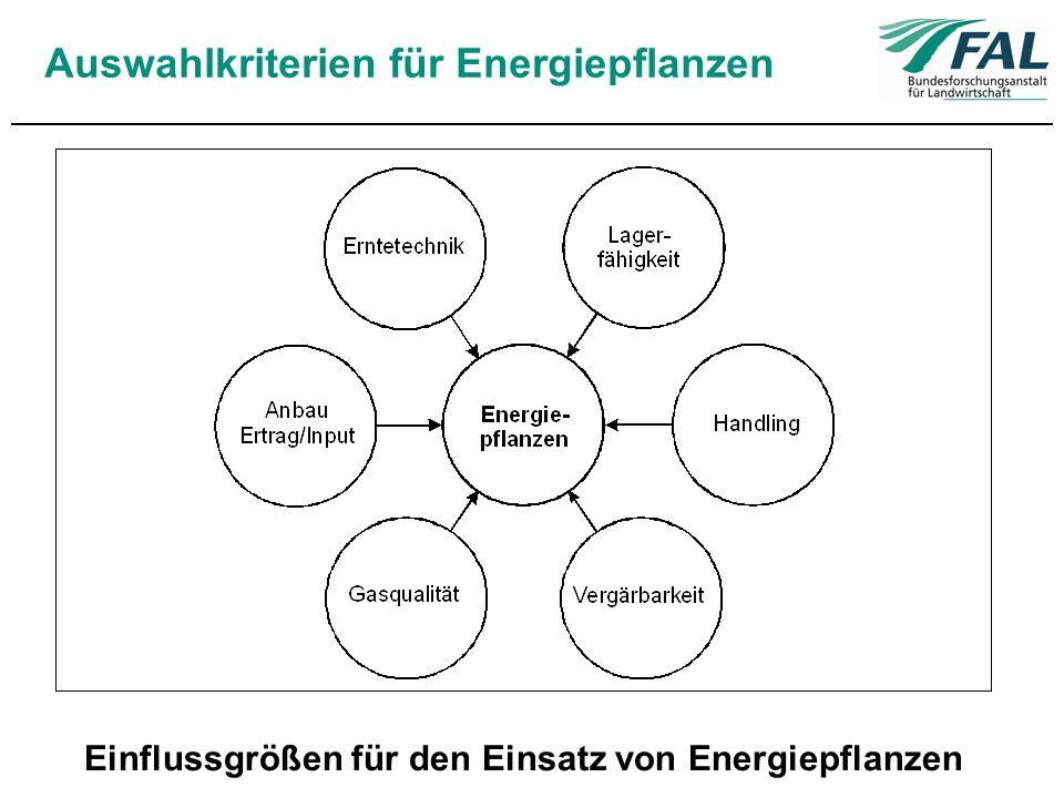 Auswahlkriterien für Energiepflanzen Einflussgrößen für den Einsatz von Energiepflanzen
