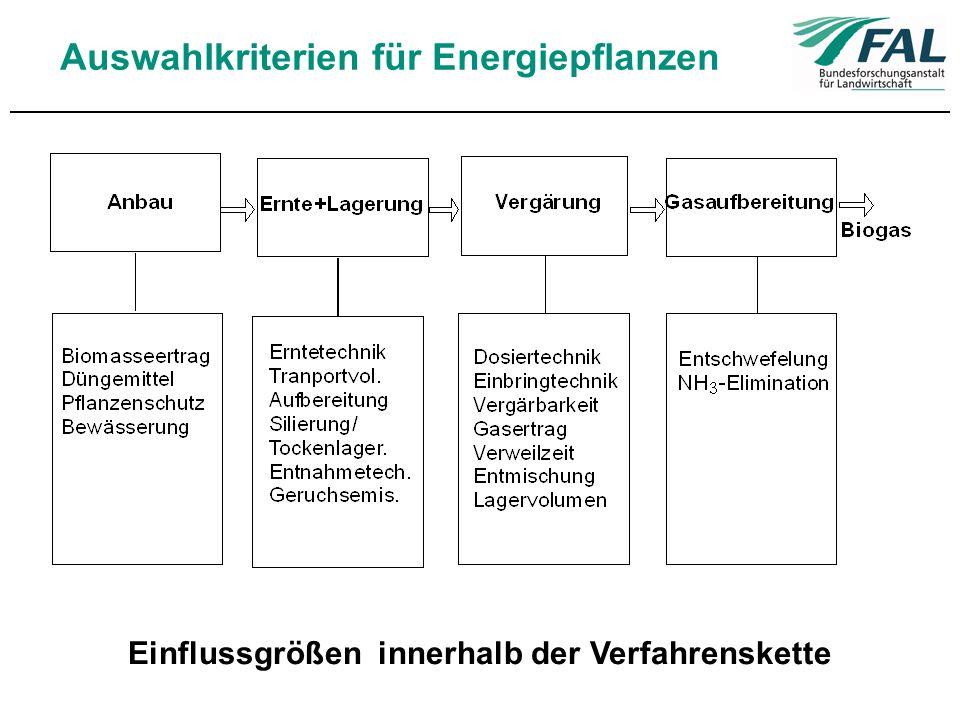Auswahlkriterien für Energiepflanzen Einflussgrößen innerhalb der Verfahrenskette