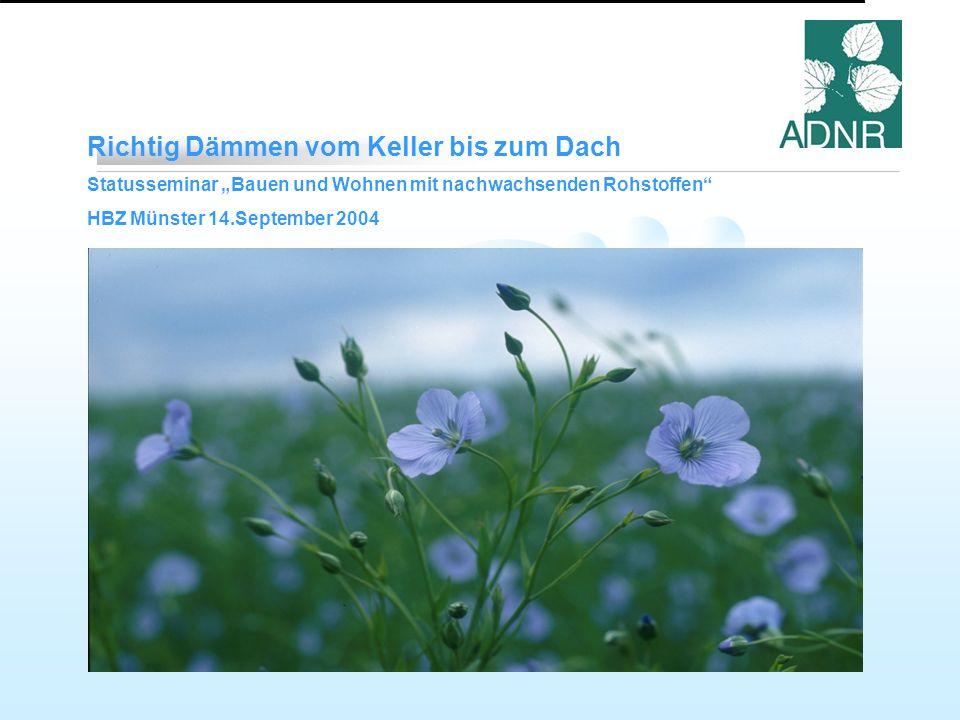 Richtig Dämmen vom Keller bis zum Dach Statusseminar Bauen und Wohnen mit nachwachsenden Rohstoffen HBZ Münster 14.September 2004