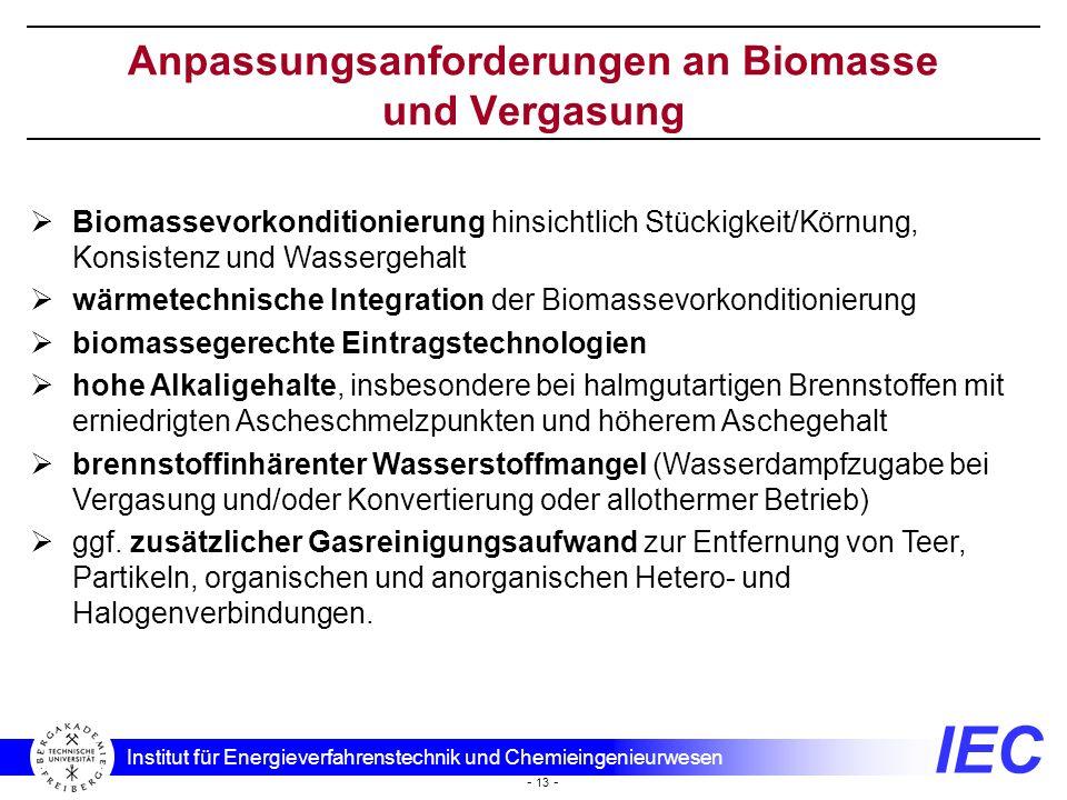 IEC Institut für Energieverfahrenstechnik und Chemieingenieurwesen - 13 - Anpassungsanforderungen an Biomasse und Vergasung Biomassevorkonditionierung