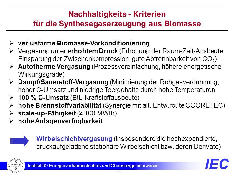 IEC Institut für Energieverfahrenstechnik und Chemieingenieurwesen - 19 - Nachhaltigkeits - Kriterien für die Synthesegaserzeugung aus Biomasse verlus