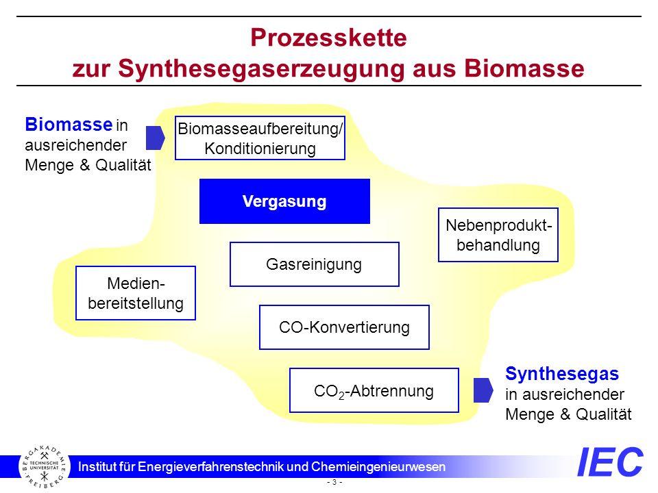 IEC Institut für Energieverfahrenstechnik und Chemieingenieurwesen - 3 - Prozesskette zur Synthesegaserzeugung aus Biomasse Biomasse in ausreichender