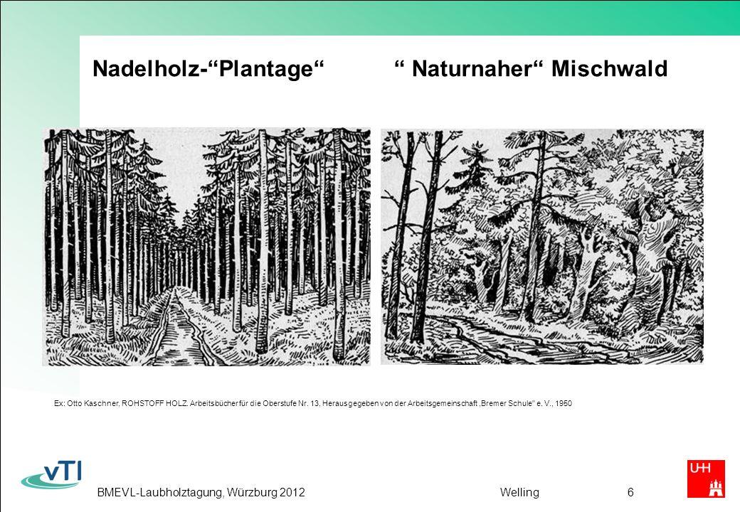BMEVL-Laubholztagung, Würzburg 2012Welling6 Nadelholz-Plantage Naturnaher Mischwald Ex: Otto Kaschner, ROHSTOFF HOLZ.