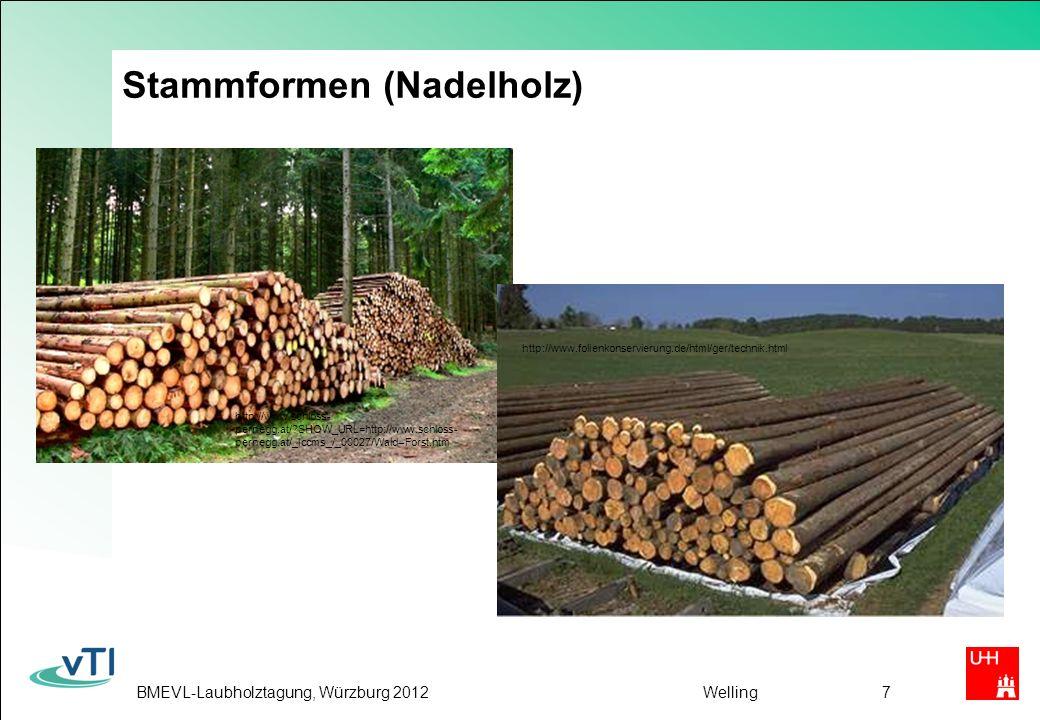 BMEVL-Laubholztagung, Würzburg 2012Welling18 Voraussetzungen für die Ausweitung der stofflichen LH-Verwendung (2) HWS-Industrie muss für eine verstärkte LH-Nutzung gewonnen werden Neue Produktionsverfahren und HWS Produkte müssen entwickelt werden Holzwerkstoffe auf Basis LH müssen leichter werden Vermeintliche bestehende Risiken müssen durch Aufklärung entkräftet oder durch geeignete Maßnahmen vermindert werden Forstwirtschaft sollte sich an den Bedürfnissen der LH- Verarbeiter orientieren, um erhöhte Mengen in die stoffliche Verwertung einzuschleusen Verarbeiter müssen ihre Erwartungen an den Rohstoff klar formulieren