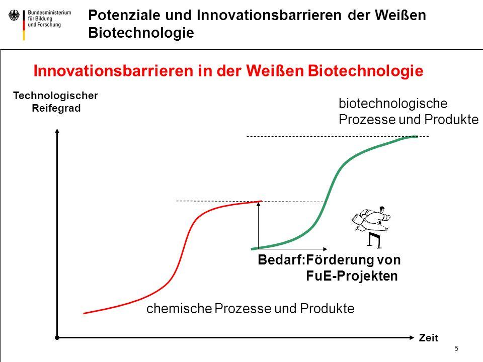 5 DatumAbteilung Titel der Präsentation Potenziale und Innovationsbarrieren der Weißen Biotechnologie Innovationsbarrieren in der Weißen Biotechnologie chemische Prozesse und Produkte biotechnologische Prozesse und Produkte Technologischer Reifegrad Zeit Bedarf:Förderung von FuE-Projekten
