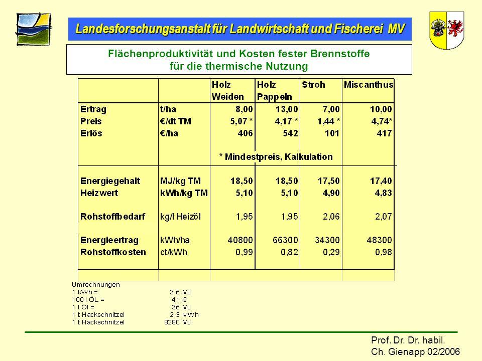 Landesforschungsanstalt für Landwirtschaft und Fischerei MV Prof. Dr. Dr. habil. Ch. Gienapp 02/2006 Flächenproduktivität und Kosten fester Brennstoff