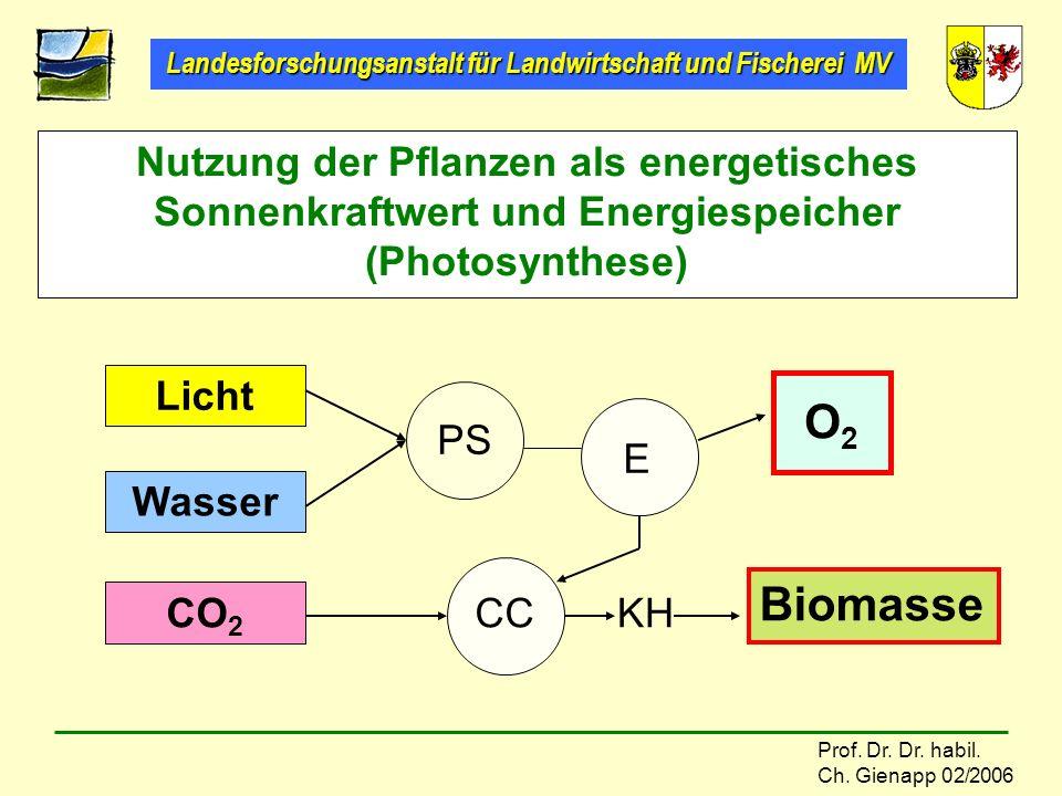 Landesforschungsanstalt für Landwirtschaft und Fischerei MV Prof. Dr. Dr. habil. Ch. Gienapp 02/2006 Nutzung der Pflanzen als energetisches Sonnenkraf