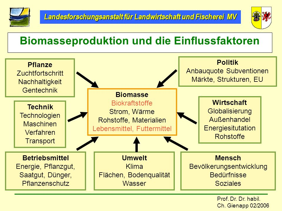 Landesforschungsanstalt für Landwirtschaft und Fischerei MV Prof. Dr. Dr. habil. Ch. Gienapp 02/2006 Biomasseproduktion und die Einflussfaktoren Pflan