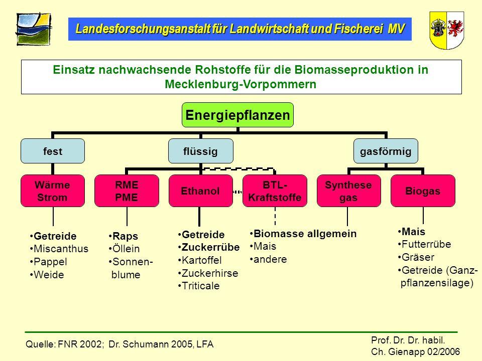 Landesforschungsanstalt für Landwirtschaft und Fischerei MV Prof. Dr. Dr. habil. Ch. Gienapp 02/2006 Getreide Miscanthus Pappel Weide Raps Öllein Sonn