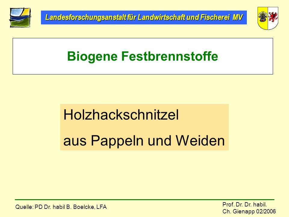 Landesforschungsanstalt für Landwirtschaft und Fischerei MV Prof. Dr. Dr. habil. Ch. Gienapp 02/2006 Biogene Festbrennstoffe Holzhackschnitzel aus Pap