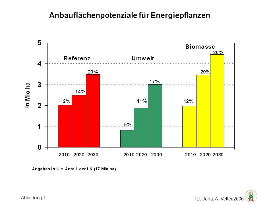 TLL Jena, A. Vetter/2006 Anbauflächenpotenziale für Energiepflanzen Abbildung 1