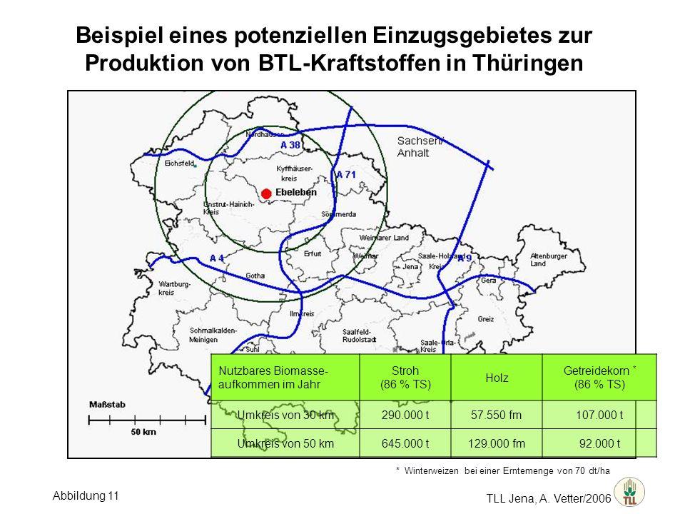 TLL Jena, A. Vetter/2006 Beispiel eines potenziellen Einzugsgebietes zur Produktion von BTL-Kraftstoffen in Thüringen * Winterweizen bei einer Ernteme